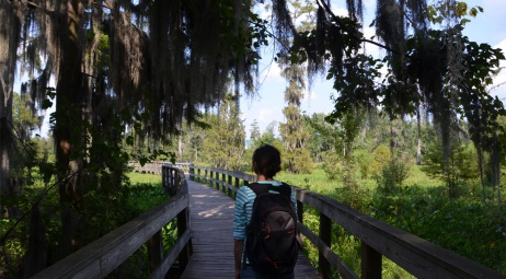 Phinizy Swamp, boardwalk