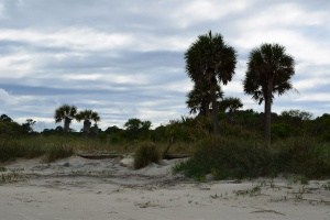 Jekyll Island - ETAPE 1 Floride