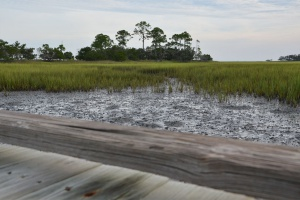 Hunting Island - Marsh Boardwalk