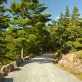 Acadia, carriage roads