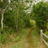 Cape Cod, sur les traces des Pilgrims
