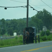 Lancaster, carriole Amish